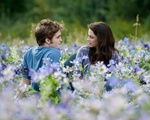 Twilight: Edward and Bella