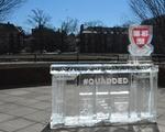Quad Ice Bar