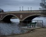 Weeks Bridge Bench