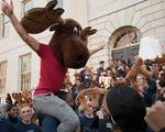Dunster Moose