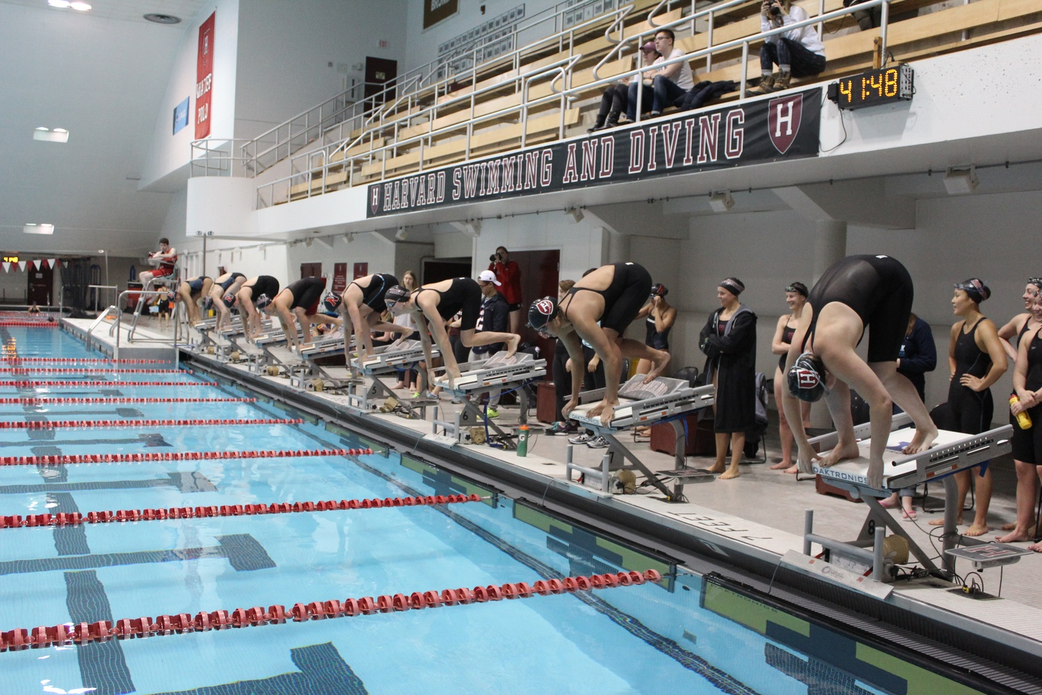 Swimmers take their marks against Northeastern on Feb. 5.