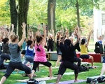 The Yoga of Awakening
