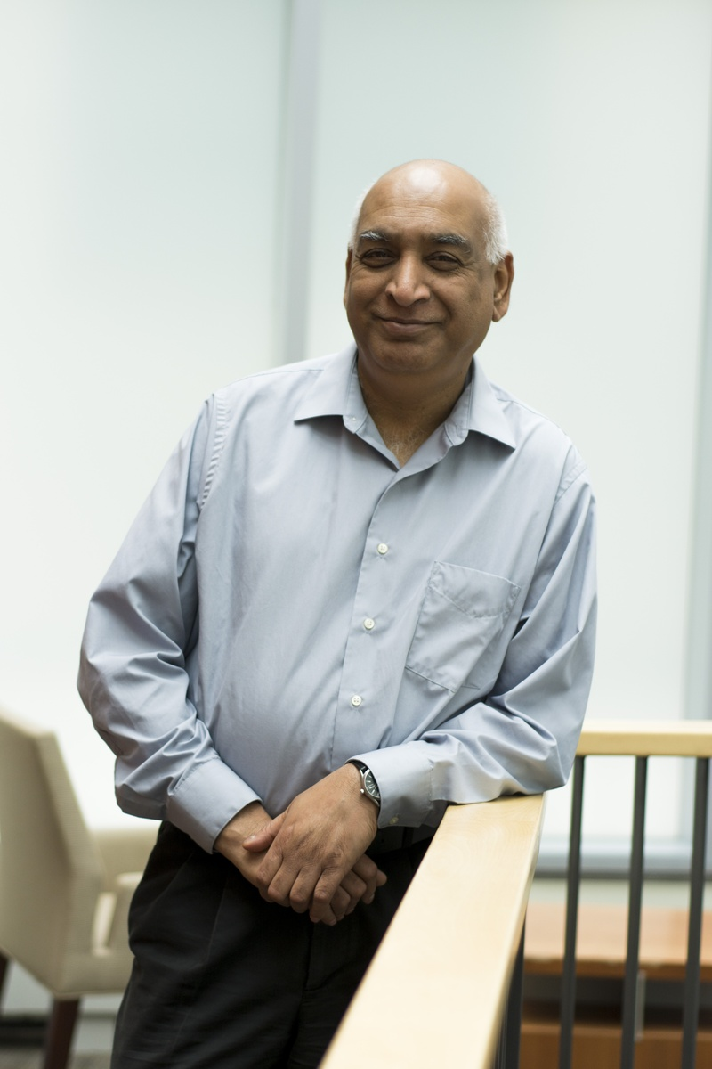 Professor Shiv S. Pillai