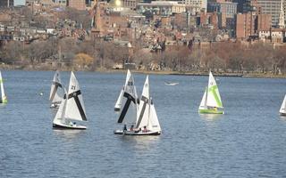 Sailing at Full Mast