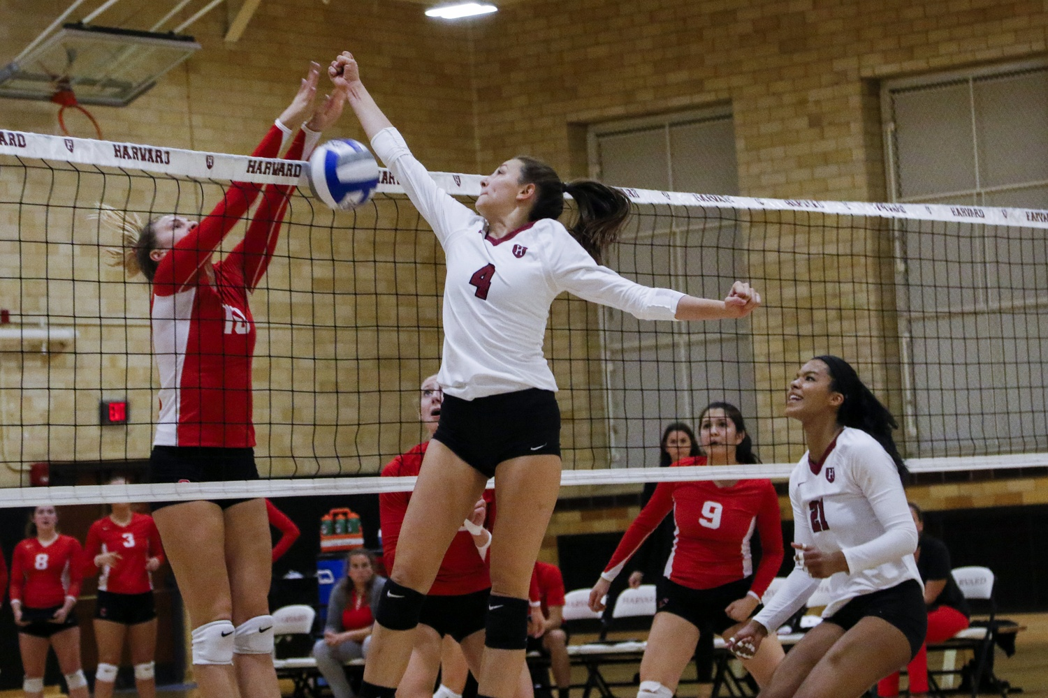 Women's Volleyball Splits Against Princeton, Penn | Sports ...