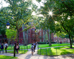 Fall in Harvard Yard