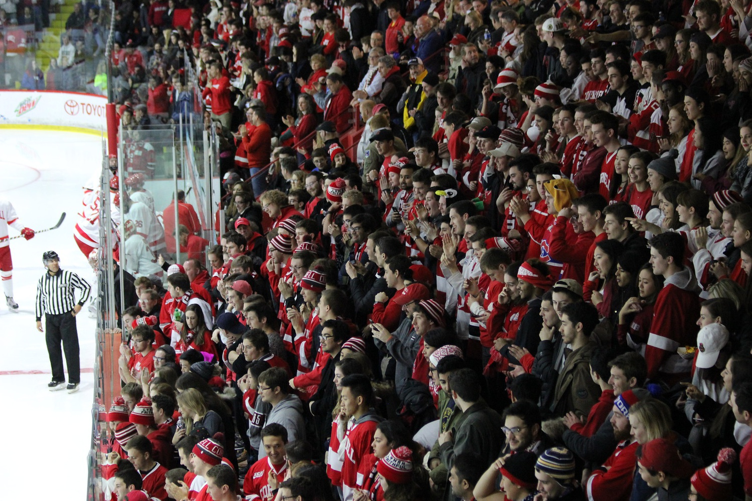 Like last year (pictured here), Harvard expects to see a ferocious crowd at Lynah Rink on Saturday.