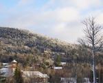 Frozen Hillside
