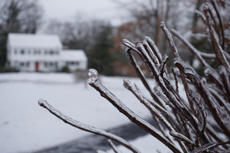 Coat of Ice