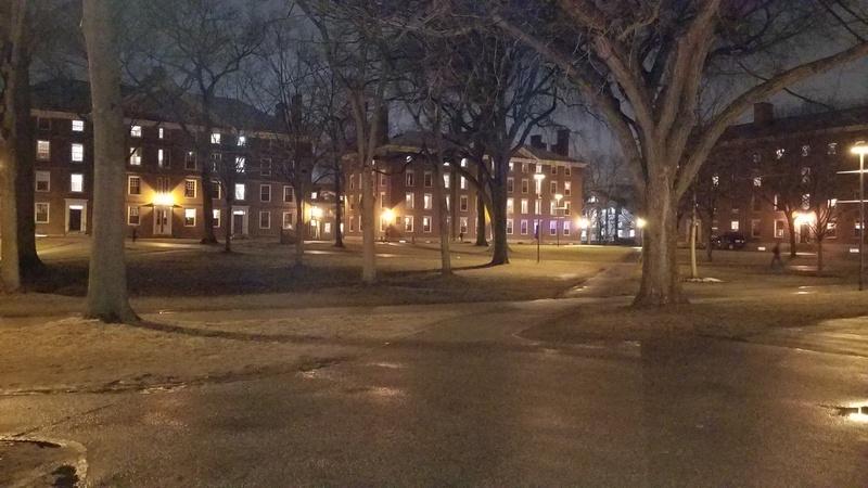 Yard at Night