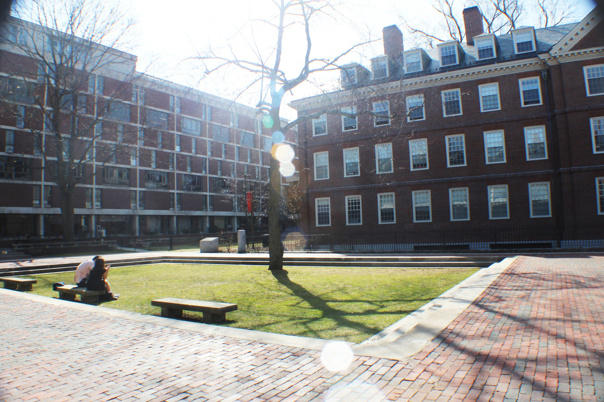 Quincy House's courtyard in the sunshine.