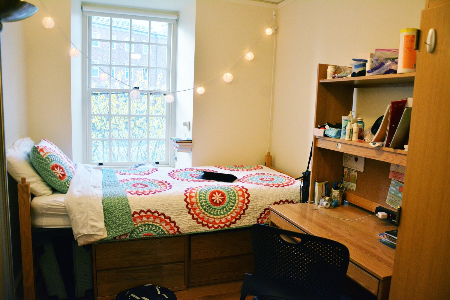 Winthrop Sophomore Room