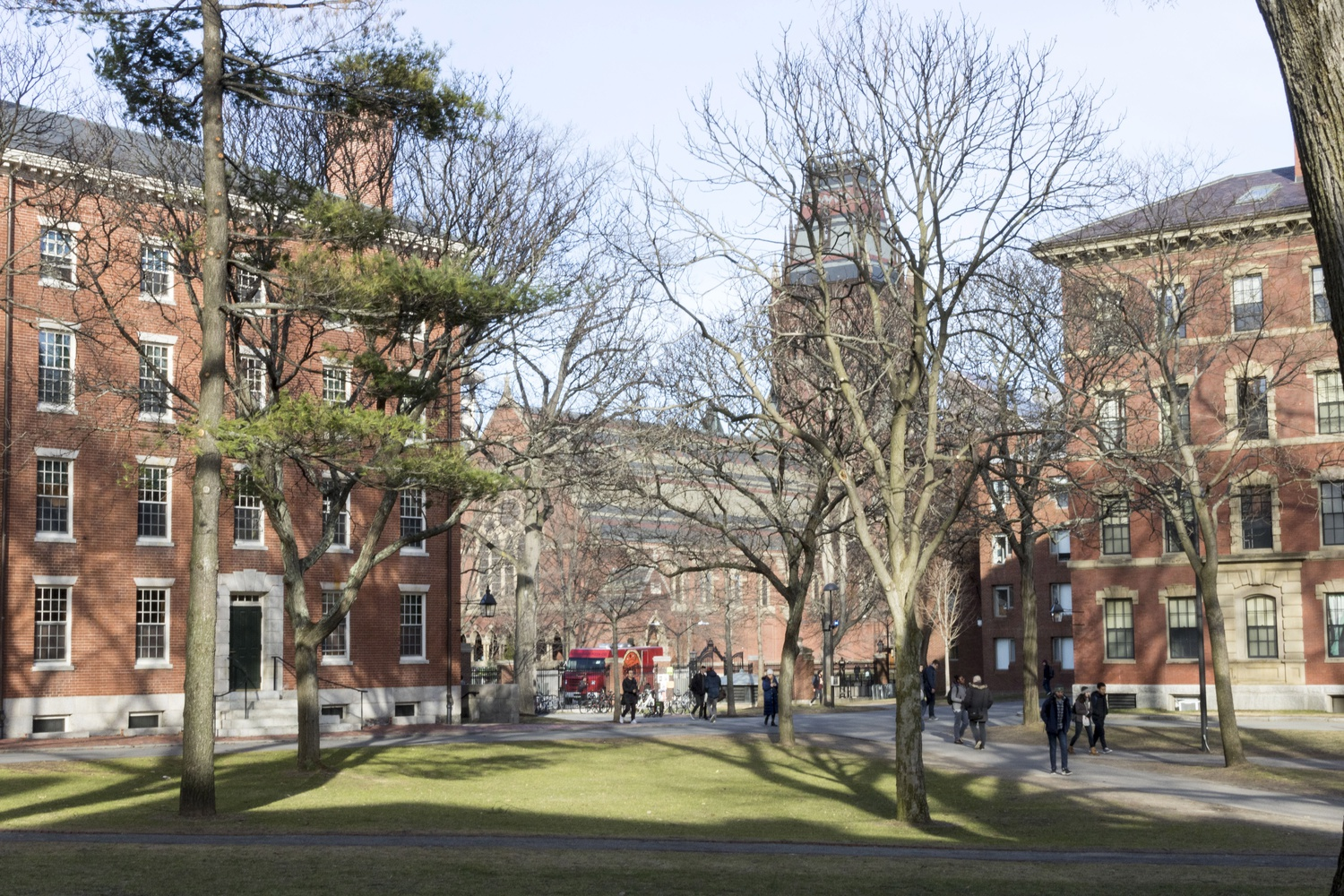 Several new student groups have drawn attention to Harvard's investments in Israeli settlements in Palestine.