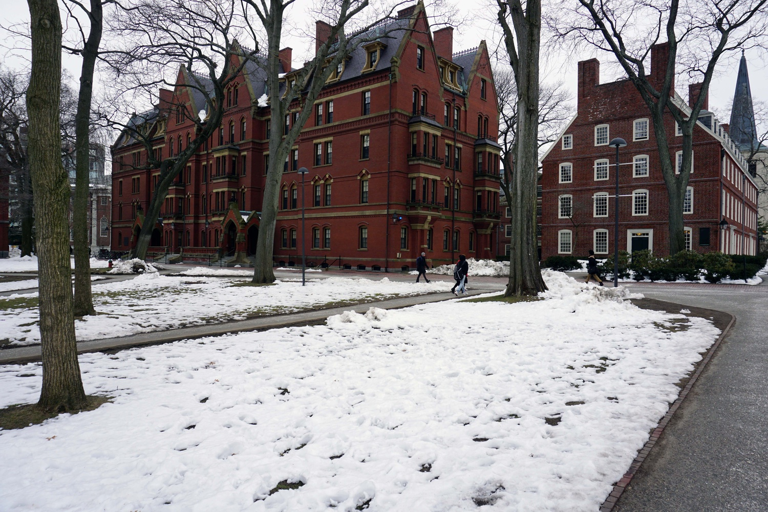 With a week of cold temperatures, Harvard Yard is still covered in frozen snow despite the onset of spring.