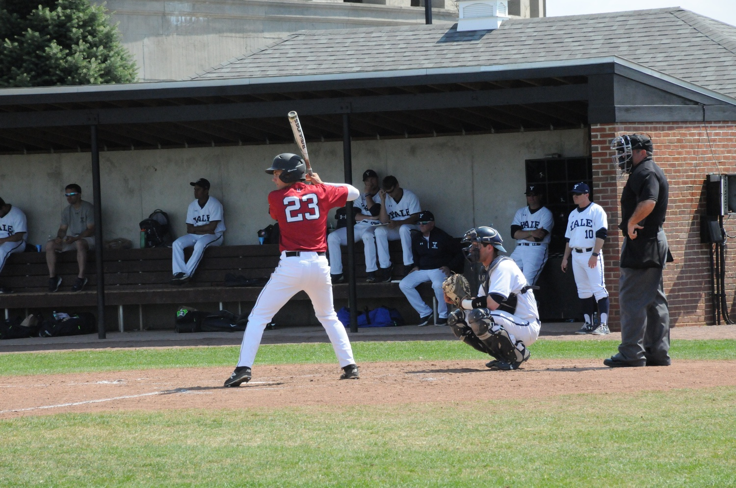 Sophomore infielder Quinn Hoffman readies for a pitch last year against Yale at O'Donnell Field.