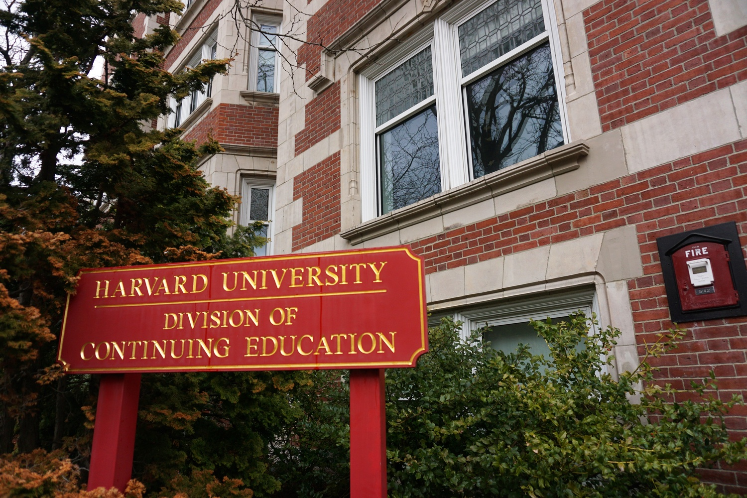 Located on Brattle Street, the Harvard Division of Continuing Education offers courses, degrees and certificates, and professional development programs.