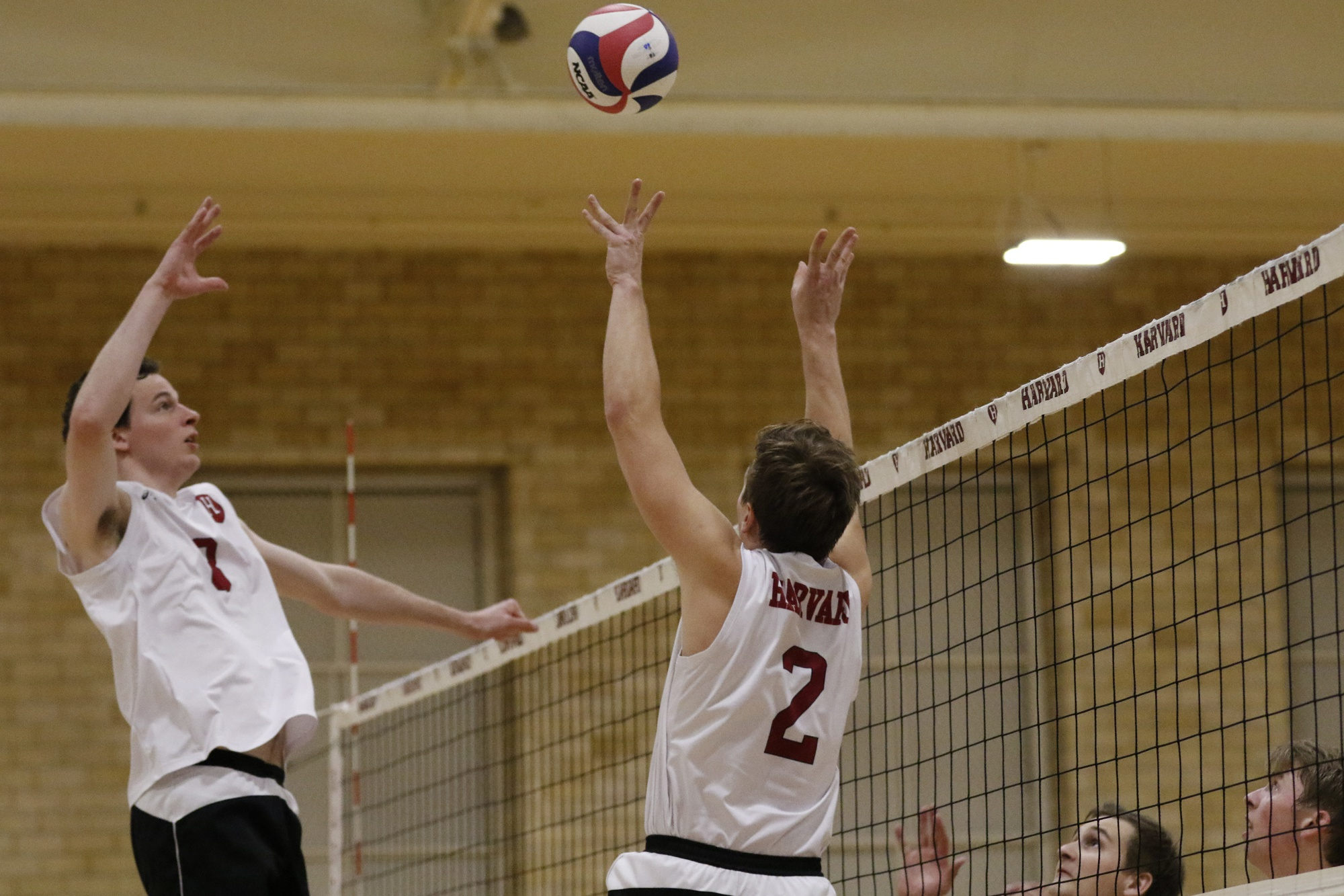 Junior middle blocker Trevor Dow (8) rises for a spike attempt in previous action against Princeton.