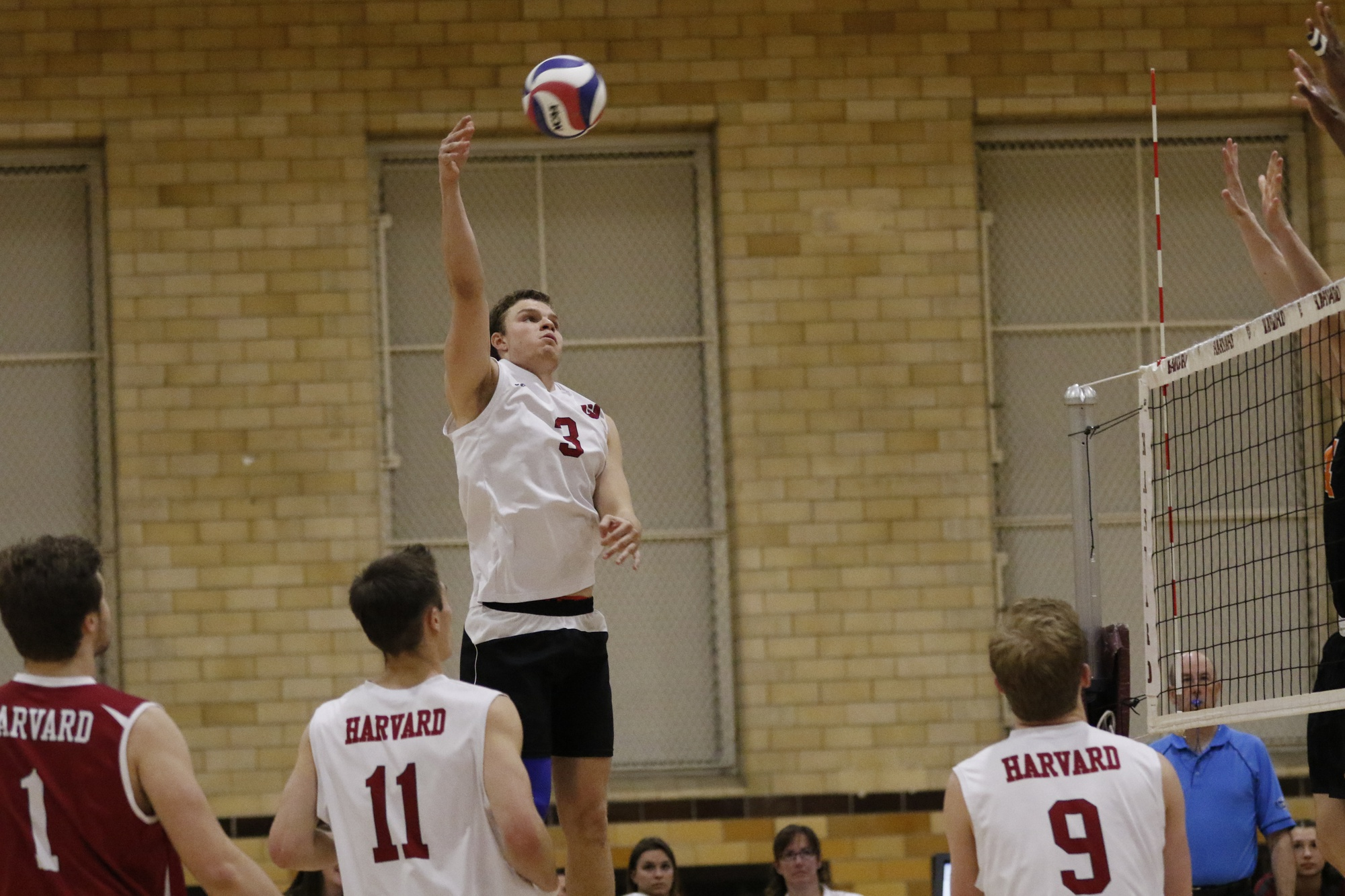Senior Brad Gretsch spikes the ball against Princeton earlier this month, a match-up the Crimson ultimately took 3-2.