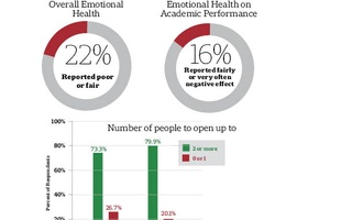 Mental Health Survey Graphic