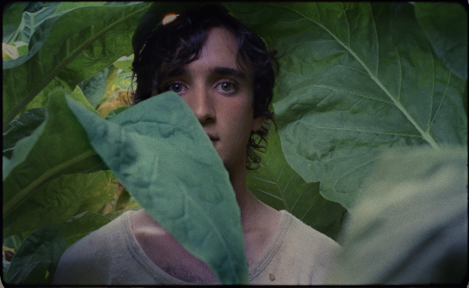 """Adriano Tardiolo stars in """"Lazzaro Felice,"""" directed by Alice Rohrwacher, which premiered at the Cannes Film Festival, 2018."""