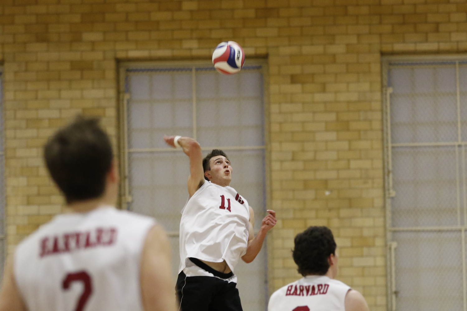 Sophomore Erik Johnsson skies to meet the ball. The outside hitter finished second on the team in kills with 188.