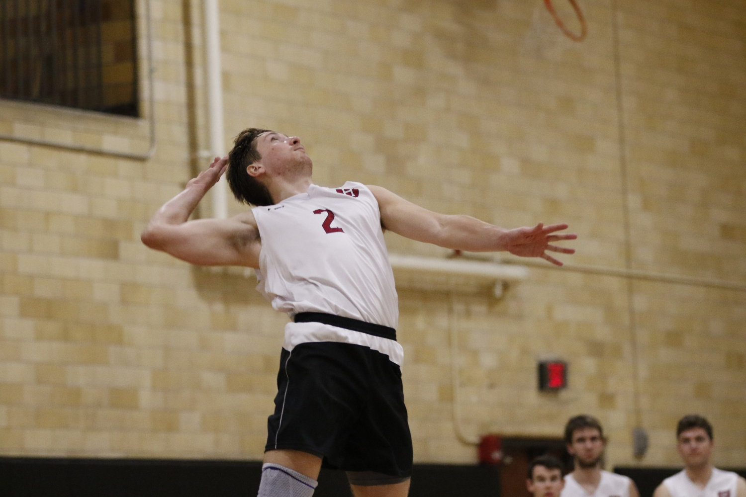 Setter Marko Kostich was one of four seniors on the EIVA-winning team. Following the conclusion of the season, Kostich was named to the CoSIDA Academic All-District Men's At-Large First Team.