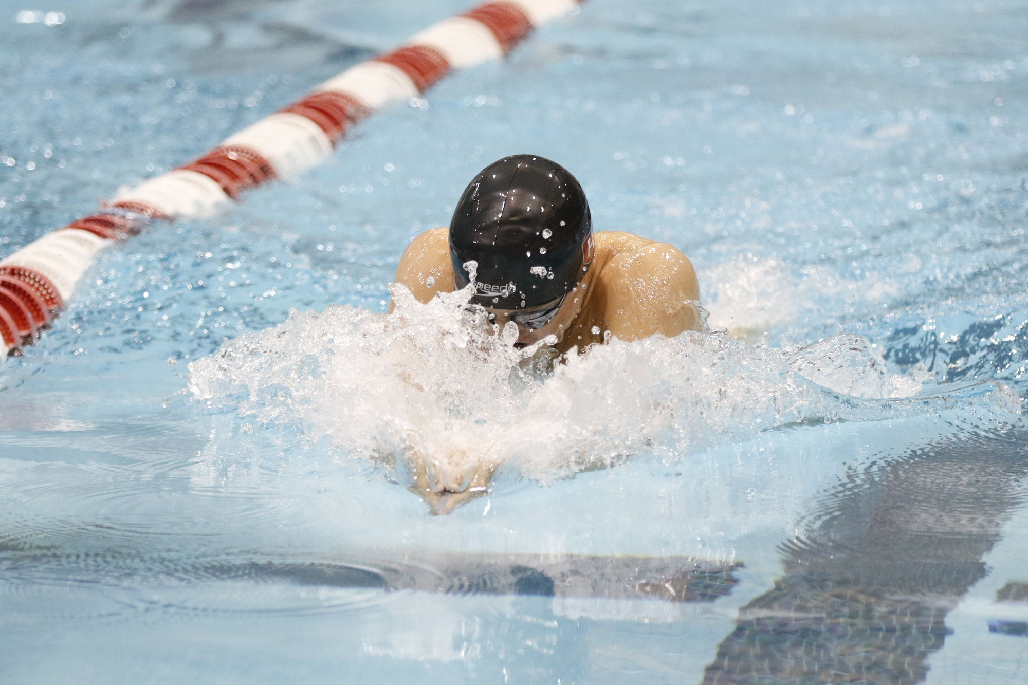 This season, the men's swimming and diving team won the Ivy League for the 25th time in program history.
