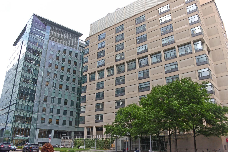 Harvard Institutes of Medicine