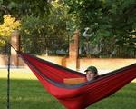 Chilling in a Hammock