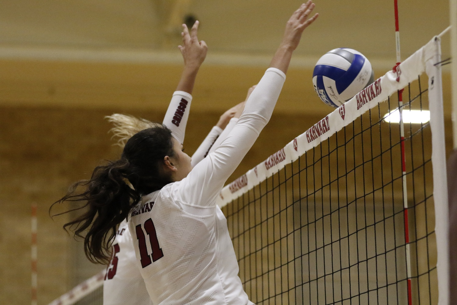 Women's Volleyball Rallies Against Brown, Falls to Yale in ...