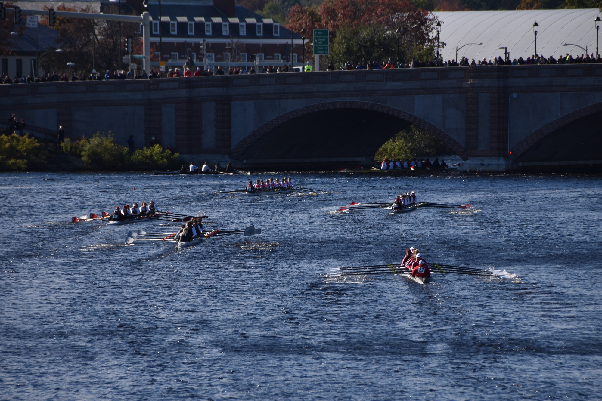 All four of Harvard's crews competed at the historic Head of the Charles Regatta this weekend.