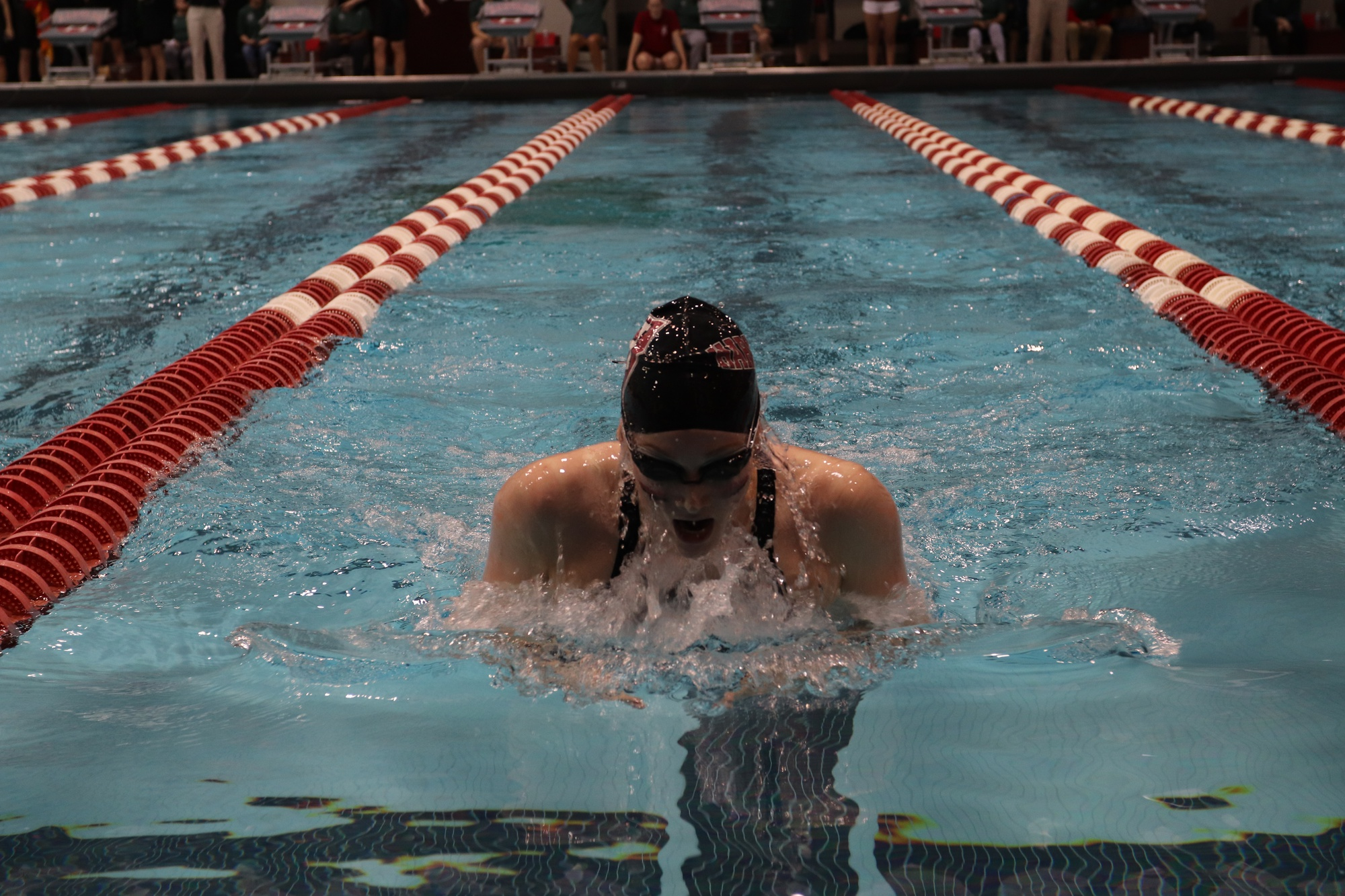 The men's and women's swimming teams will welcome 19 freshmen this season.