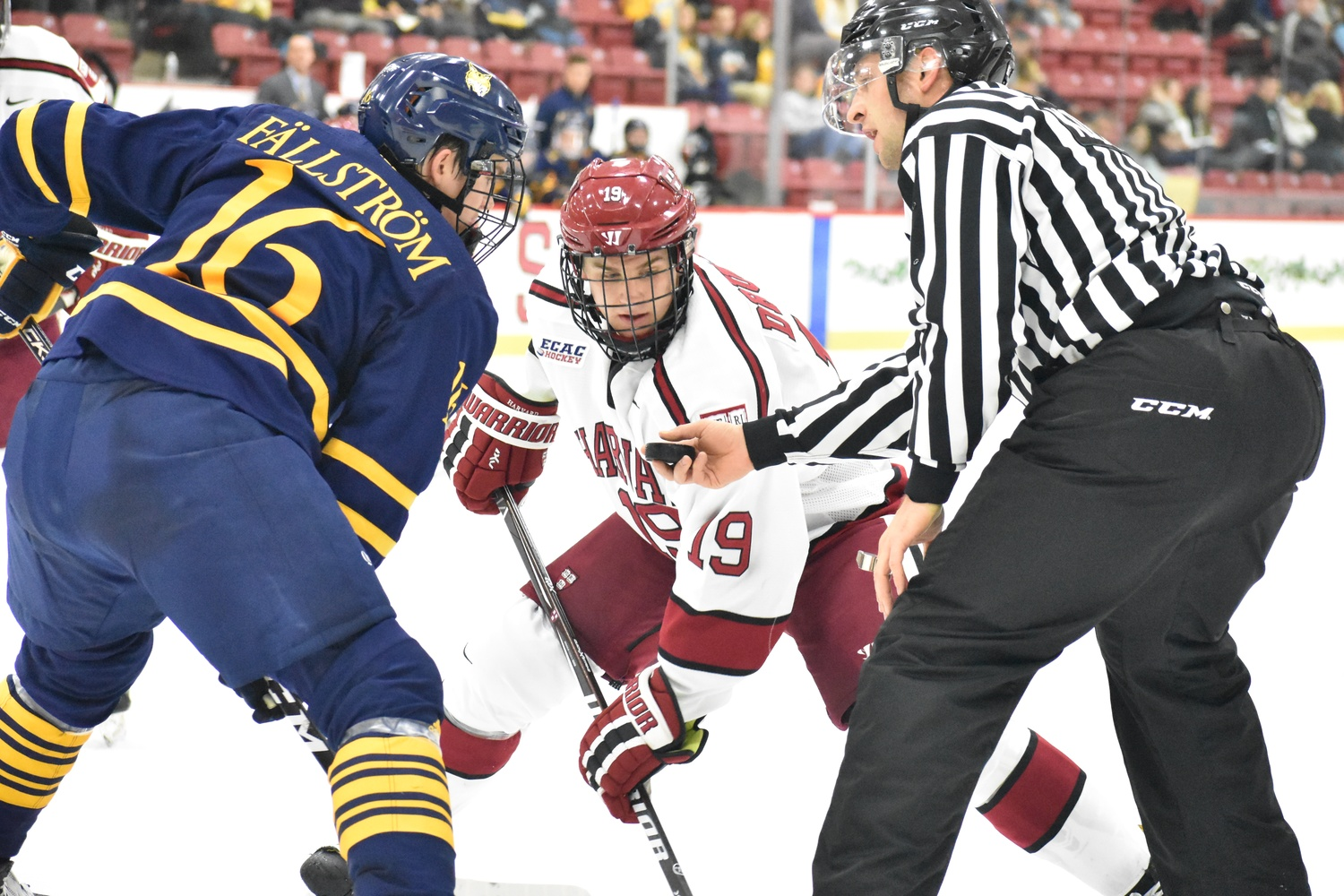 Shuffling of the lines after last weekend's loss against Dartmouth saw rookie Jack Drury centering the team's top line, alongside freshman Casey Dornbach and sophomore Henry Bowlby.