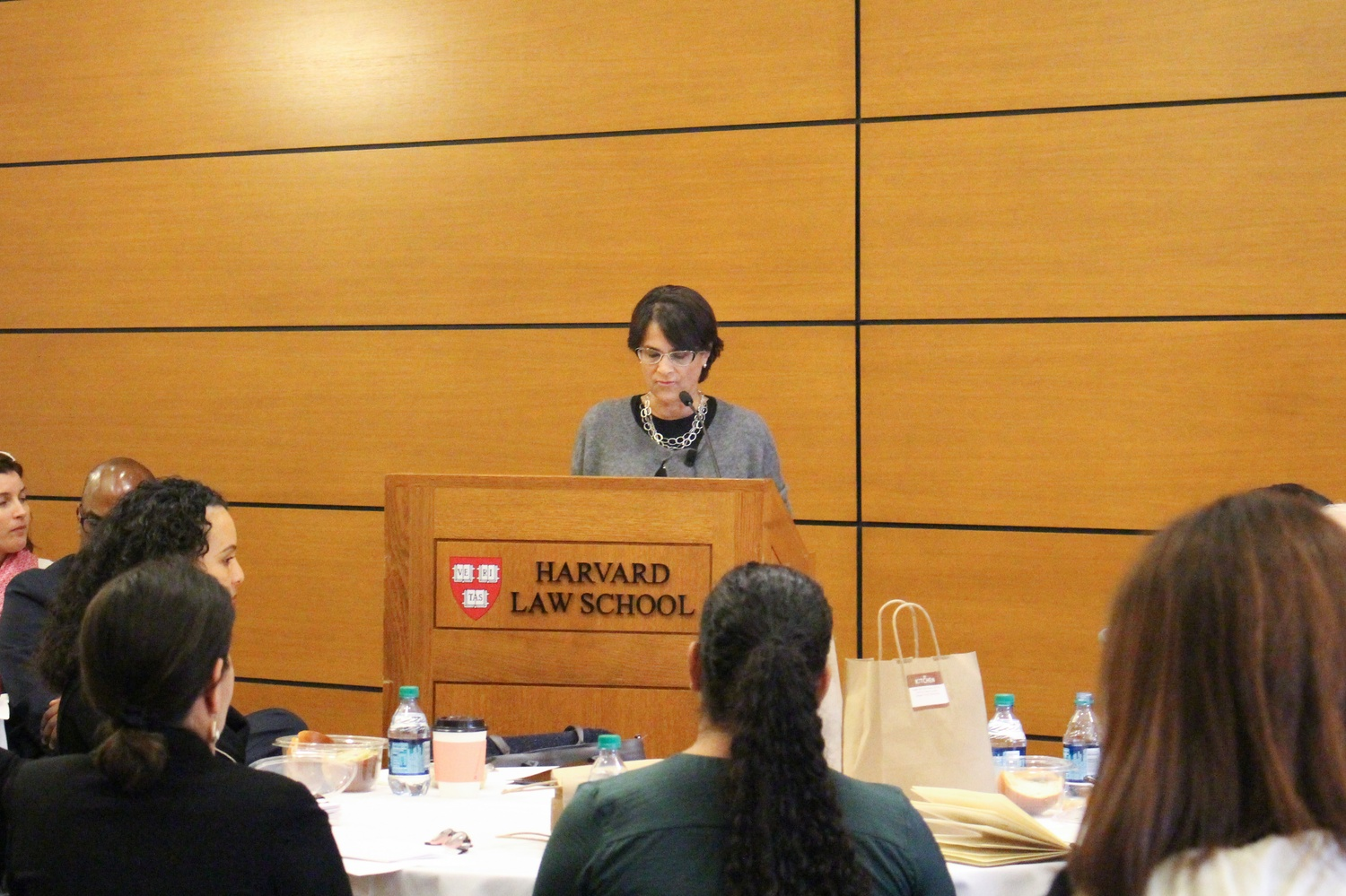 Martha S. Jones, a Society of Black Alumni Presidential Professor and Professor of History at Johns Hopkins University, discusses the issue of birthright citizenship at the Harvard Law School Wednesday afternoon.
