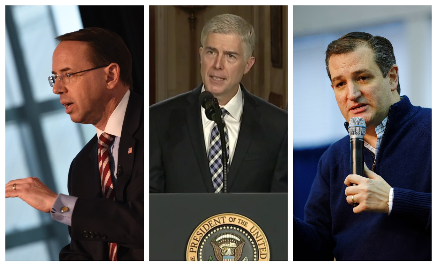 United States Deputy Attorney General Rod Rosenstein, Supreme Court Justice Neil M. Gorsuch, and United States Senator Ted Cruz all passed through the ranks of the Harvard Federalist Society.
