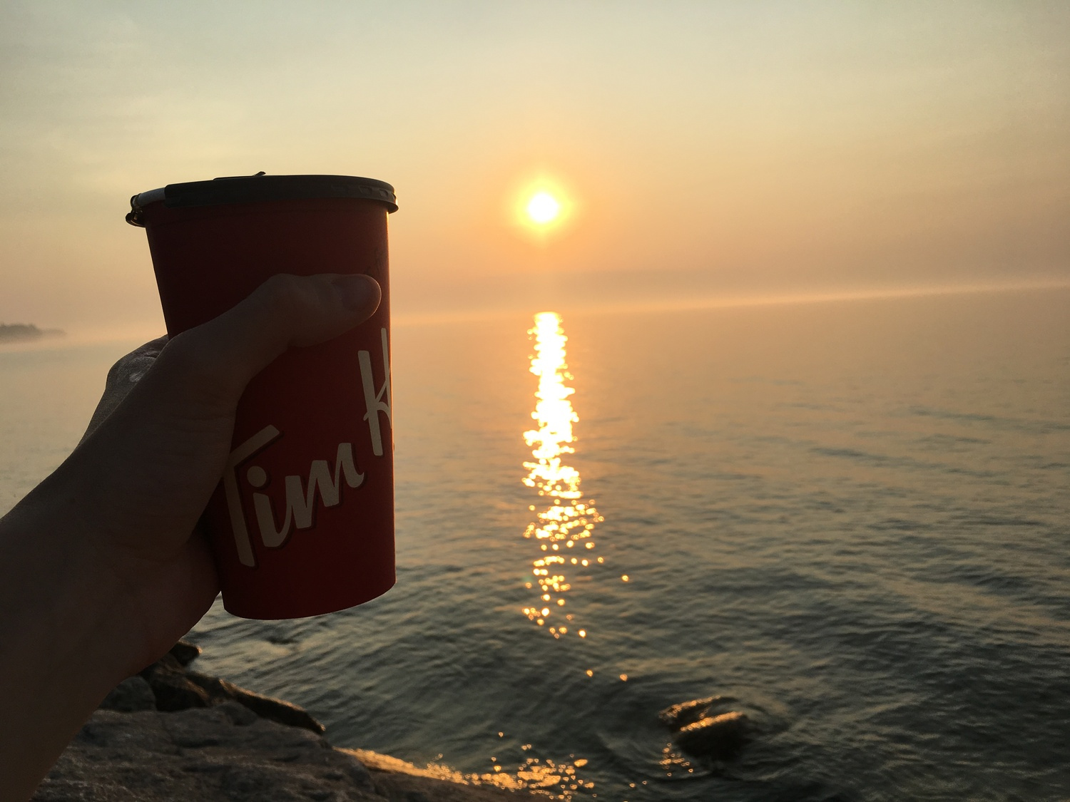 RIP Tim Hortons, Dunkin' simply wont suffice for this Canadian writer.