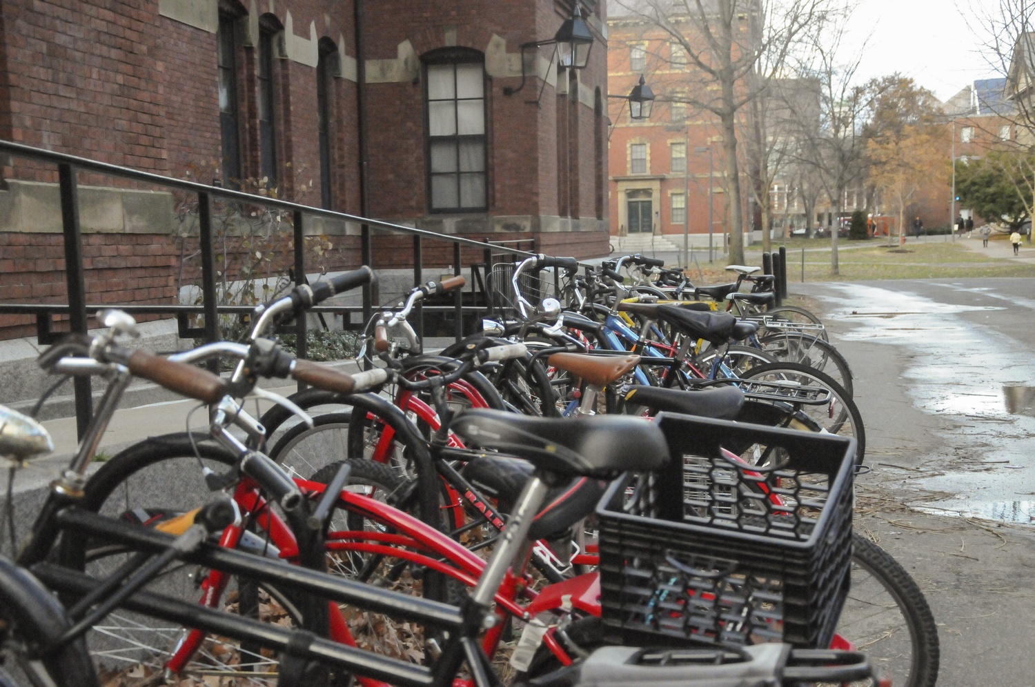 Student bikes saturate the bike racks outside of Weld in the middle of winter.