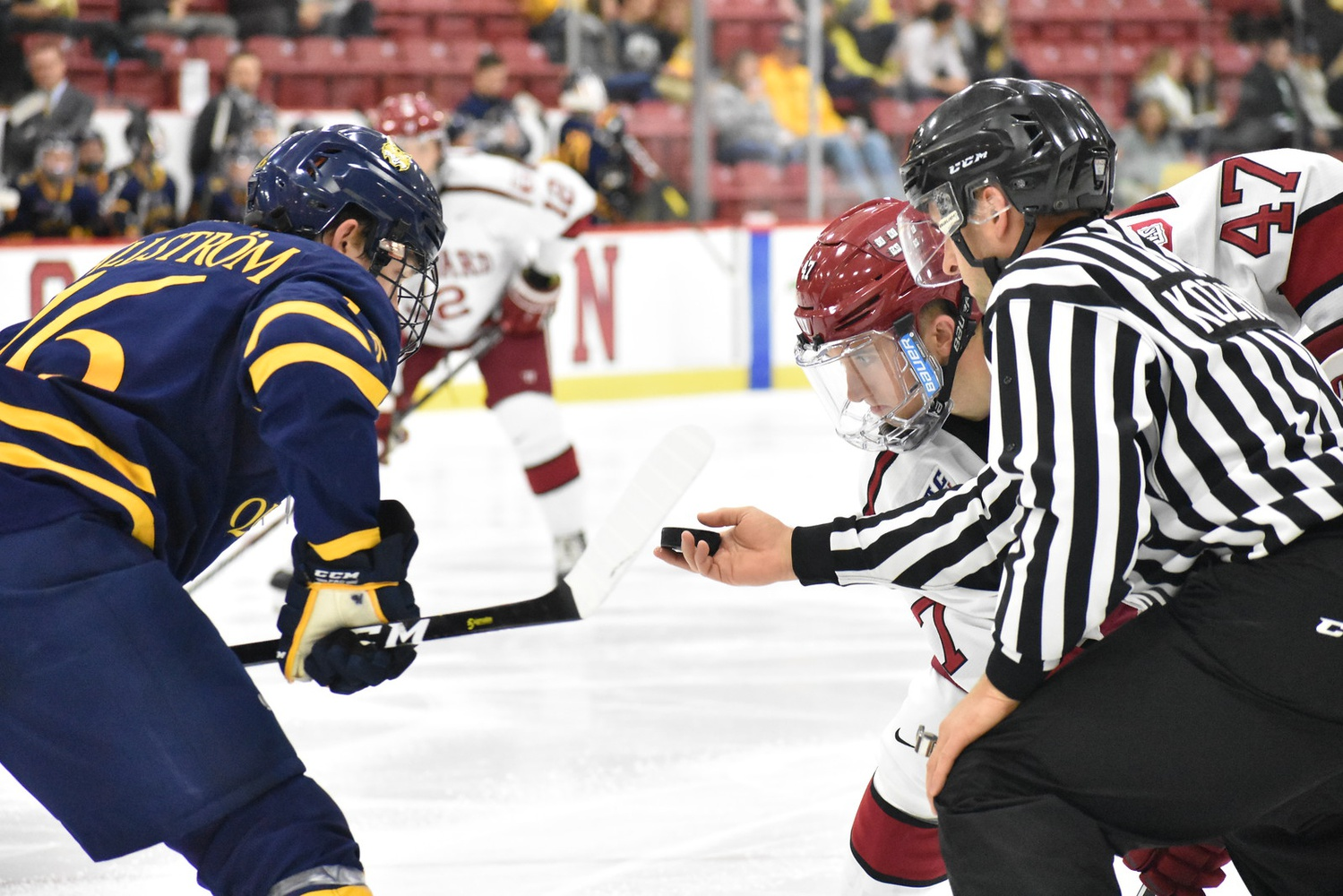 After the Bobcats skated past the Crimson in early November, Harvard outlasted a highly ranked Quinnipiac team on the back of sturdy goaltending.