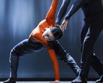 Nederlands Dance Theater 2 Still