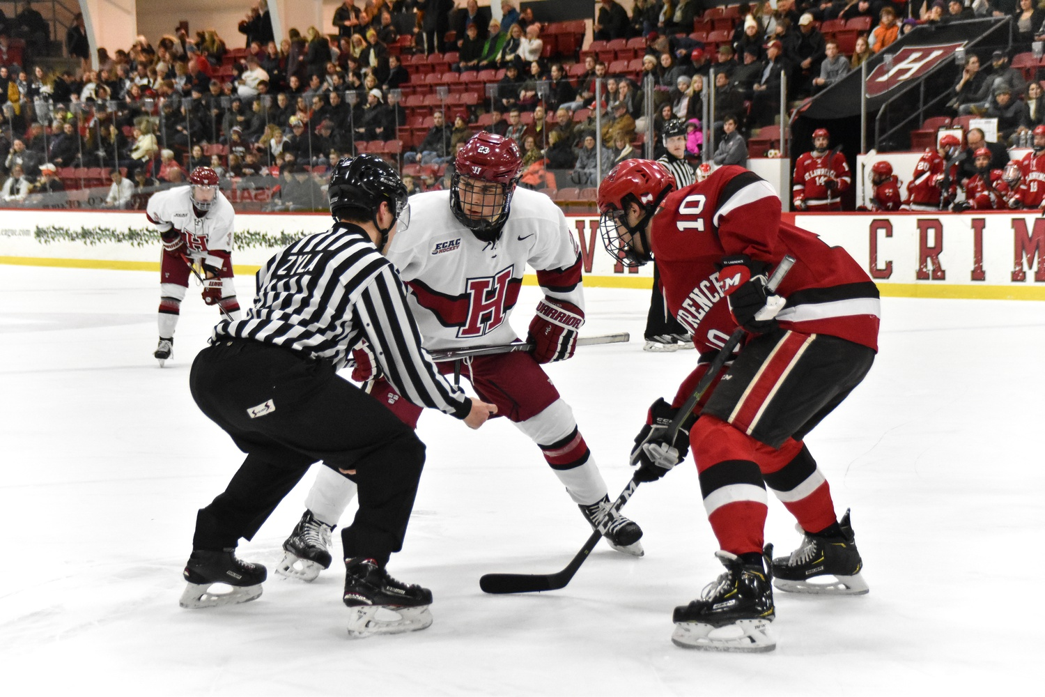 The last time the Crimson faced off against St. Lawrence, the Saints were staring down a 6-0 hole 30 minutes into the game. Harvard net-minder Michael Lackey, who returned to the bench at the halfway mark, posted a perfect save percentage for the night.