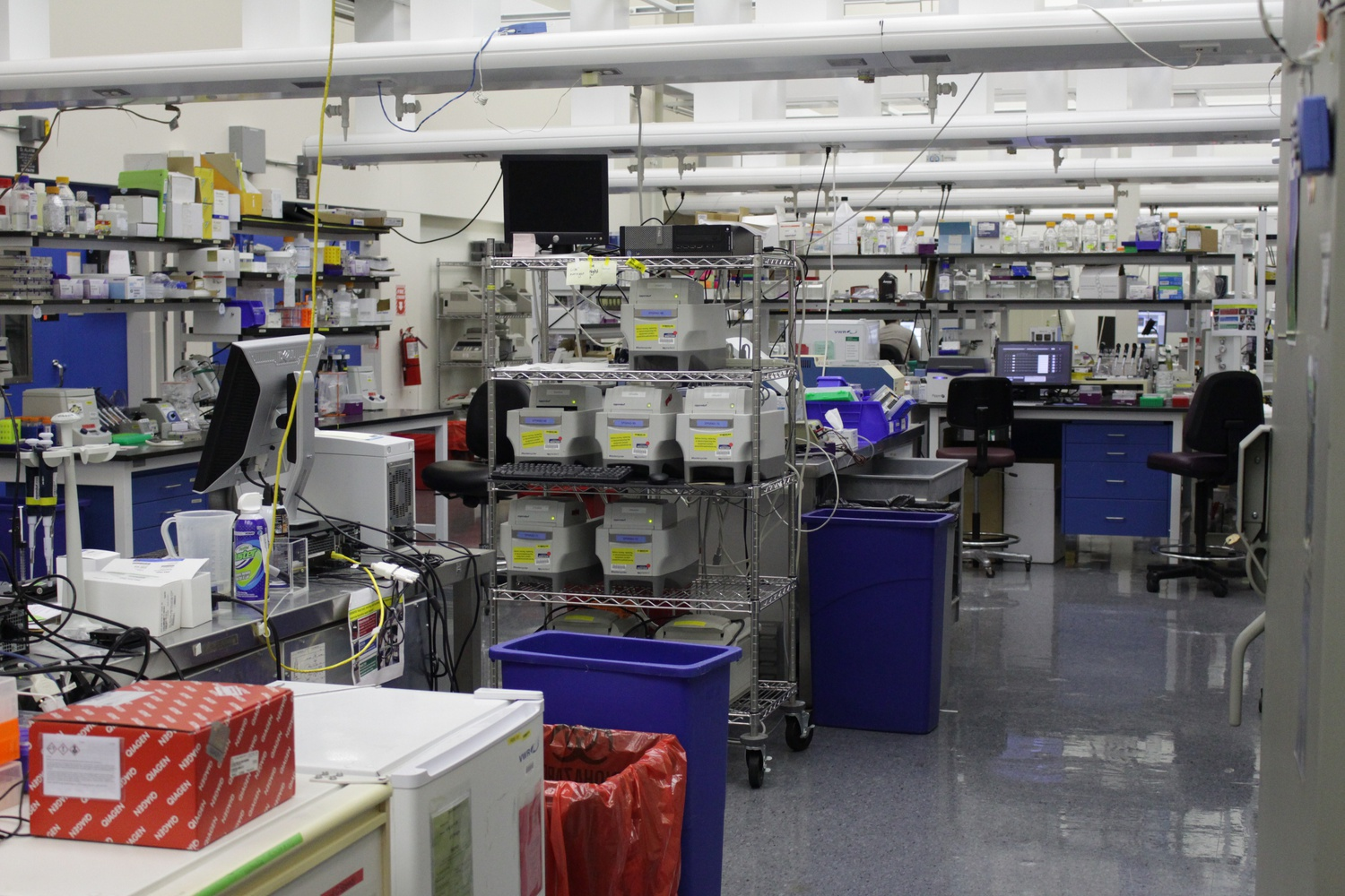 At the Broad Institute, researchers perform technical procedures and experiments in the wet laboratories