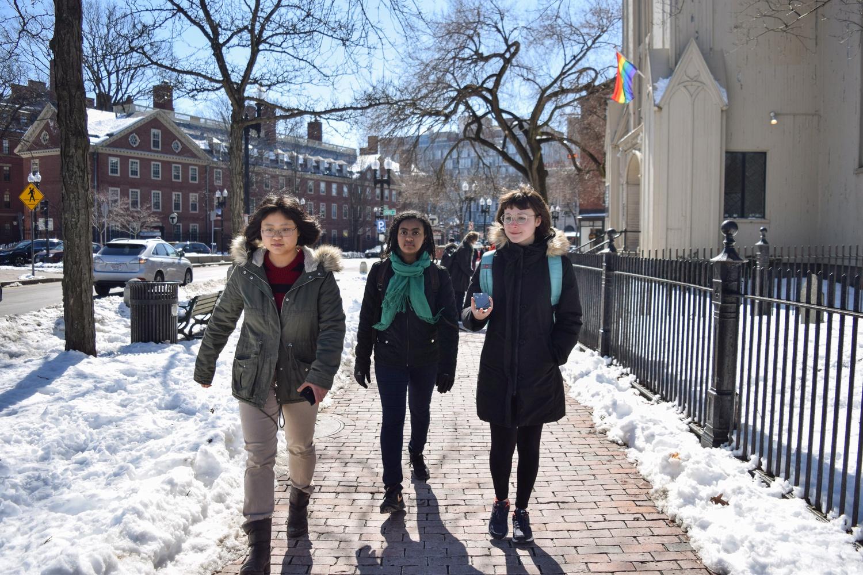 Members of the Harvard Walking Association walk through the outskirts of Cambridge, just beyond Danehy Park.