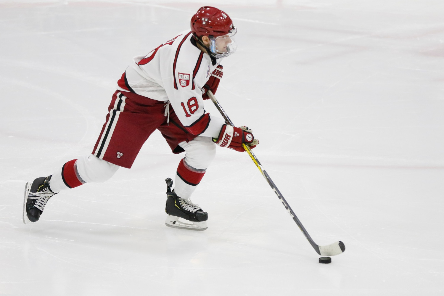 Junior defenseman Adam Fox will clash on Friday with another one of the NCAA's elite blue-liners, UMass sophomore Cale Makar. Both rearguards are contenders for this year's Hobey Baker Award, given to college hockey's most outstanding player.