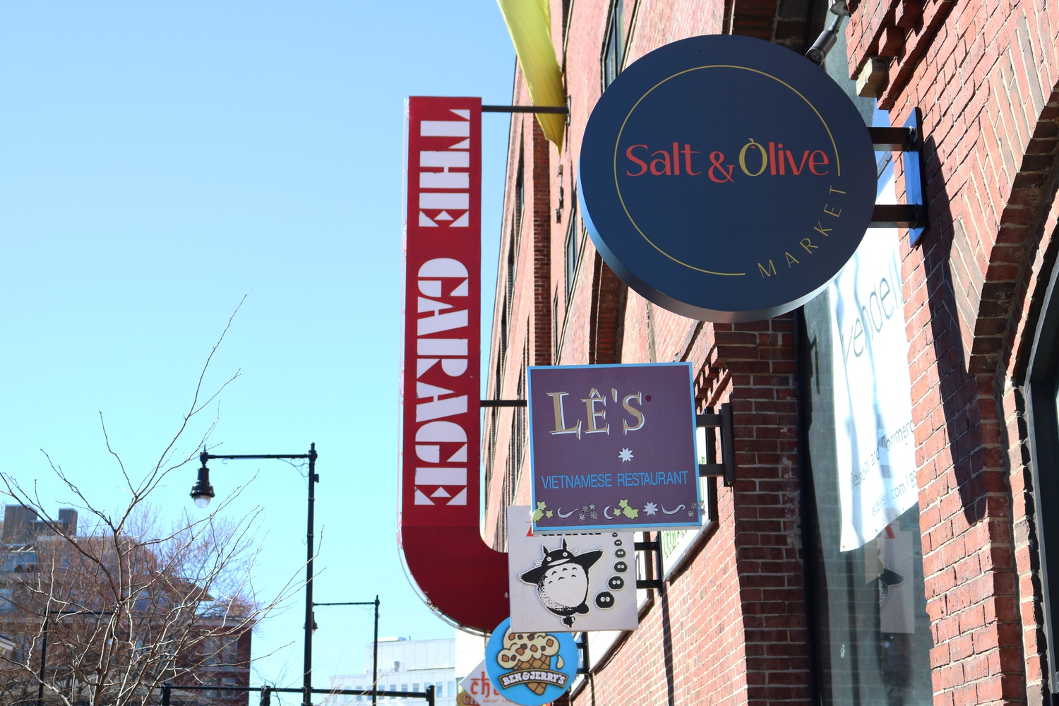 A new sign along Mt. Auburn St. indicates the new opening of Salt and Olive, a Cambridge-based oil, spice, and tea company.