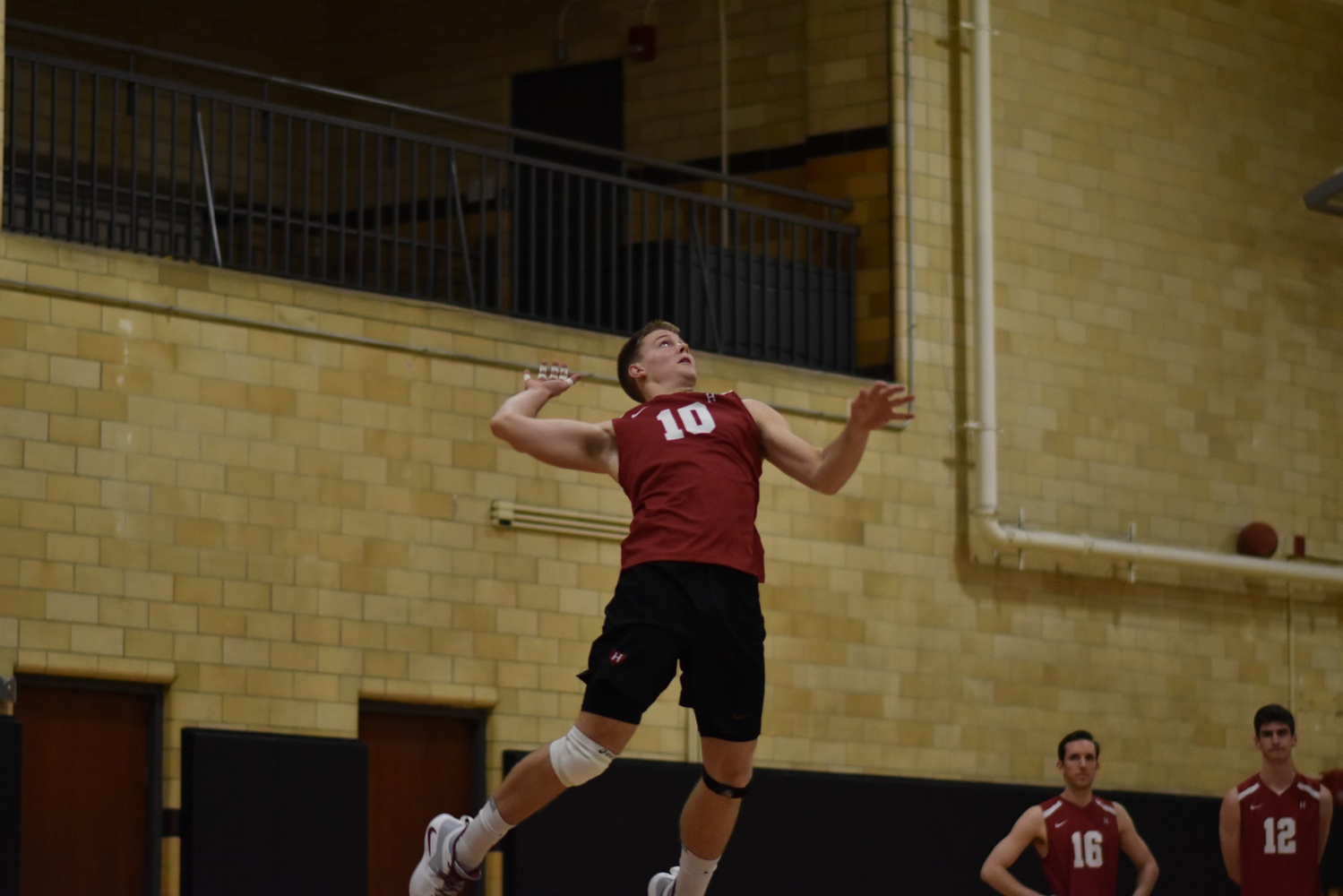 Setter Matthew Ctvrtlik prepares to spike the volleyball in February's game against Purdue Fort Wayne.