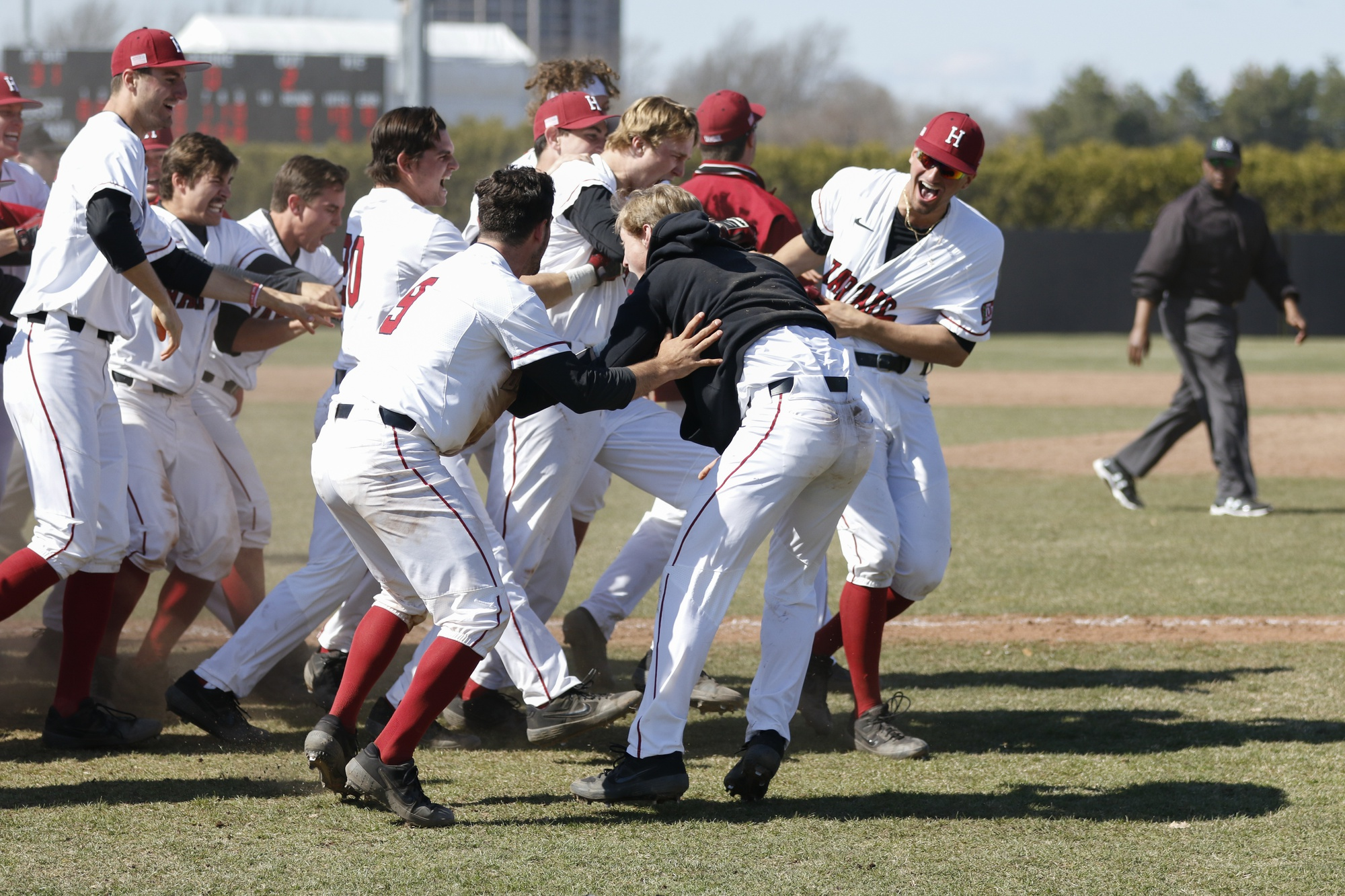 The team embraces McColl after the miraculous finish to the ballgame. Harvard would go on to win the second game of the doubleheader, but fell on Sunday in its sweep bid.