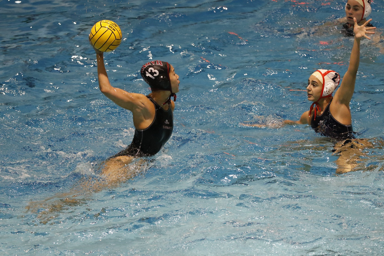 3df34cde2f6 Women's Water Polo Leans on Seniors as Postseason Approaches ...