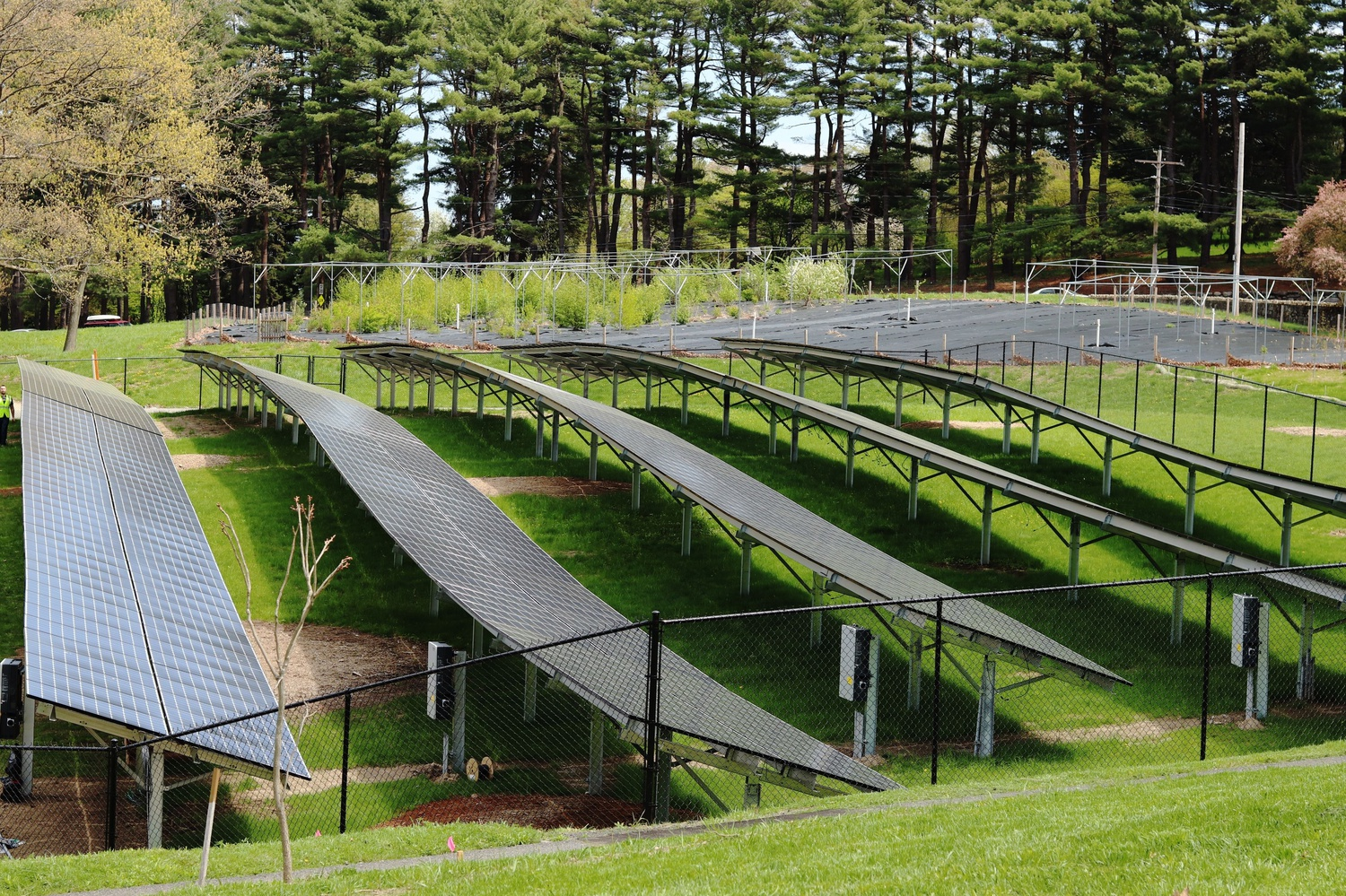 The Arnold Arboretum is in the process of installing new solar panels to generate energy as part of their mission to lower their carbon footprint.