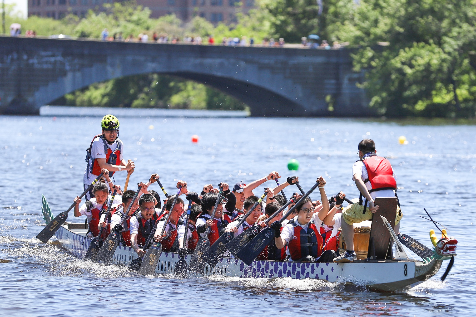 A record 76 teams of over 1500 paddlers from across the country competed in this year's Boston Dragon Boat Festival races.