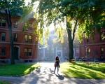 Harvard Yard in Sunlight